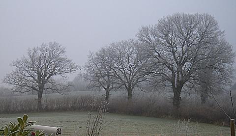 2007-12-24-1116.jpg