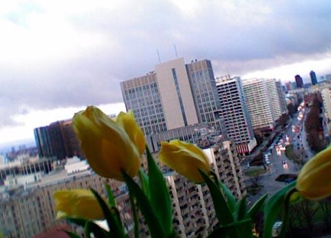 2008-01-27-1548.jpg