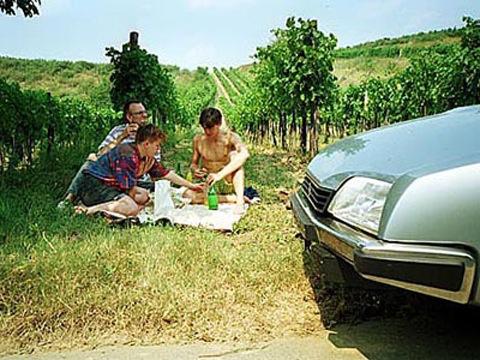 1990-08-01-cxpicknick.jpg