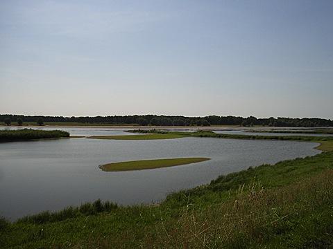 2008-07-25-1156.jpg