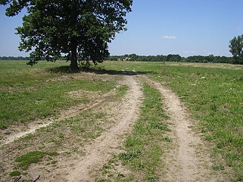 2008-07-26-1308.jpg