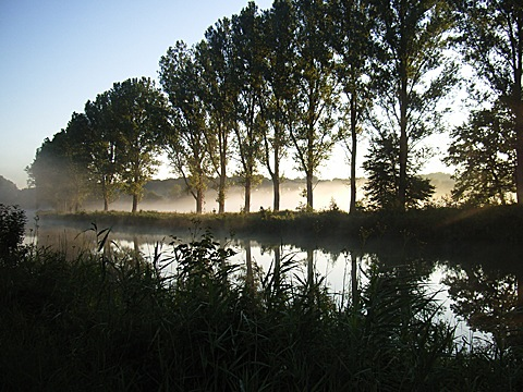 2008-07-27-0613a.jpg