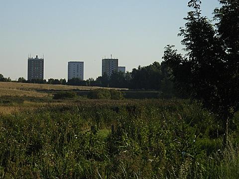2008-07-27-0702.jpg