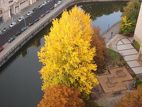 2008-10-10-0741.jpg