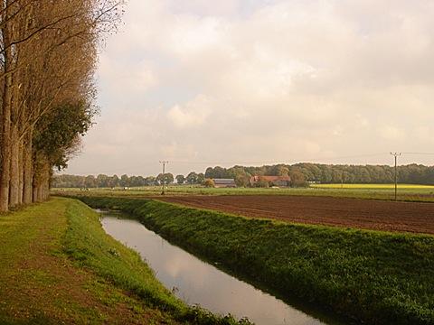 2008-10-25-1316.jpg