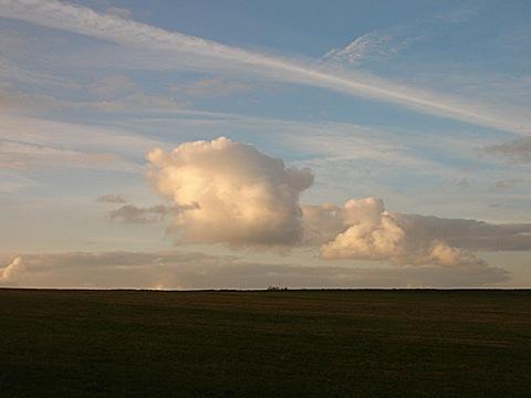 2008-11-17-1541.jpg