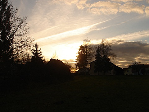 2008-11-17-1542.jpg