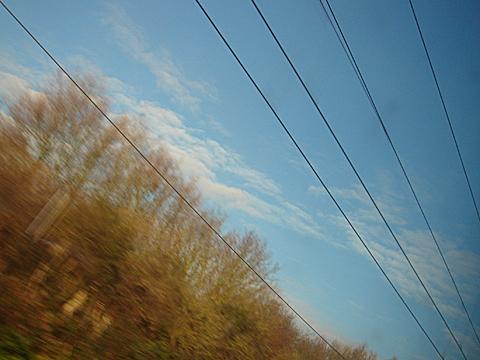 2008-11-27-1117.jpg