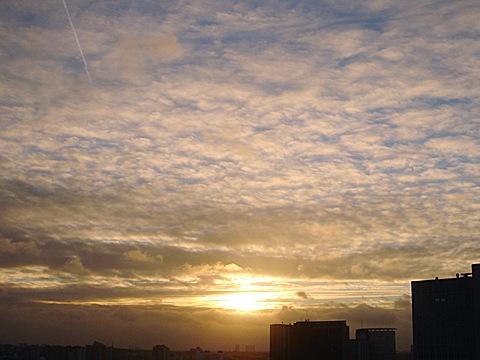 2008-12-23-1519.jpg