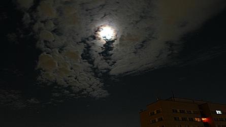 2009-01-09-0147.jpg