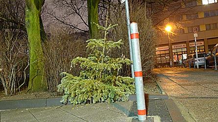2009-01-16-0159.jpg