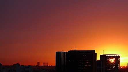 2009-01-20-1621.jpg