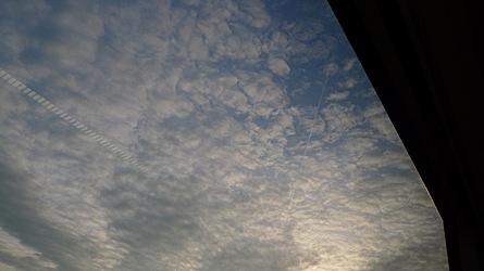 2009-03-21-1749.jpg