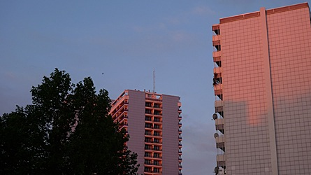 2009-06-10-0454.jpg