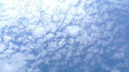 2009-07-13-1711.jpg