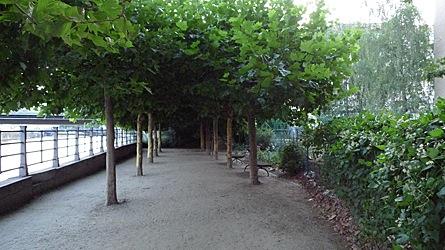 2009-07-27-2059b.jpg