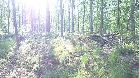 2009-08-02-0940.jpg