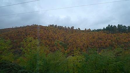 2009-10-30-1156.jpg