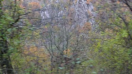 2009-10-30-1403.jpg
