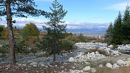 2009-10-31-1230.jpg