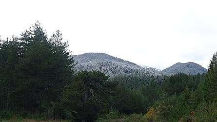 2009-10-31-1311b.jpg