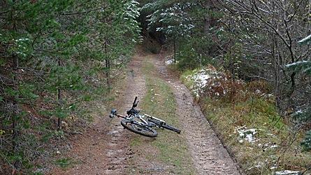 2009-10-31-1355b.jpg