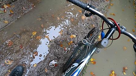2009-10-31-1420.jpg