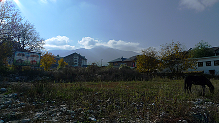 2009-11-01-1409.jpg
