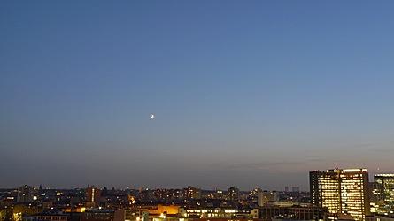 2009-11-20-1652.jpg