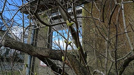 2010-03-05-1156.jpg
