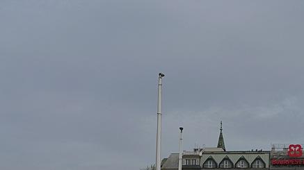 2010-03-30-0934.jpg