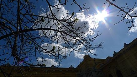2010-04-01-1357b.jpg