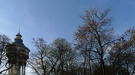 2010-04-03-1739.jpg