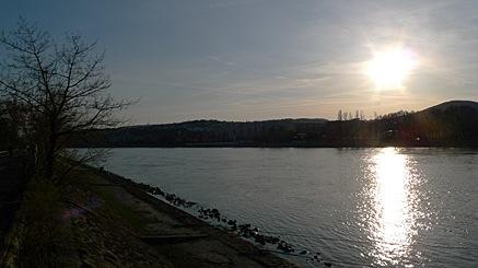 2010-04-03-1809.jpg
