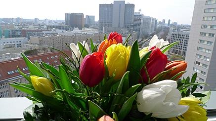 2010-04-08-1445.jpg