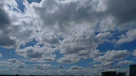 2010-08-16-1247.jpg