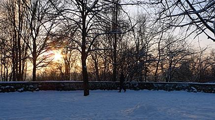 2010-12-18-1505.jpg