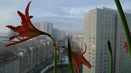 2011-01-08-1031.jpg