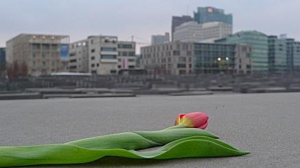2011-01-28-1612.jpg
