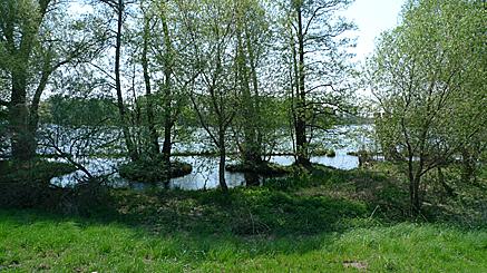 2011-04-24-1216.jpg