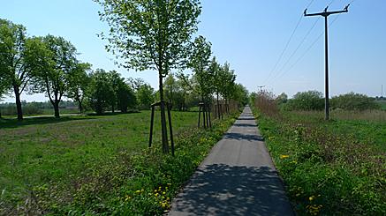 2011-04-24-1424.jpg