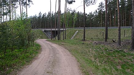 2011-04-25-1252.jpg