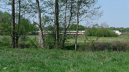 2011-04-25-1357.jpg