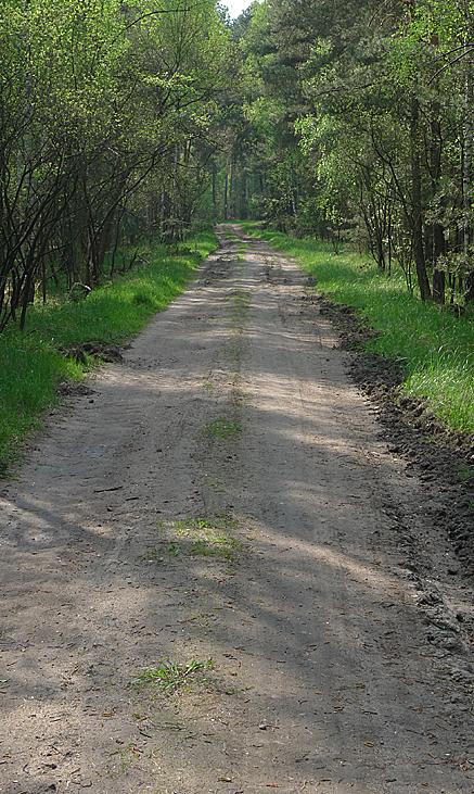 2011-04-25-1620.jpg