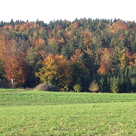 2012-10-21-1646.jpg