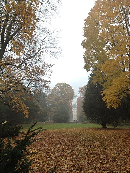 2012-11-10-1547.jpg