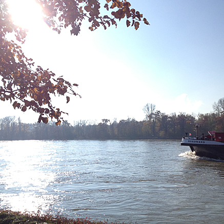 2012-11-13-1226.jpg
